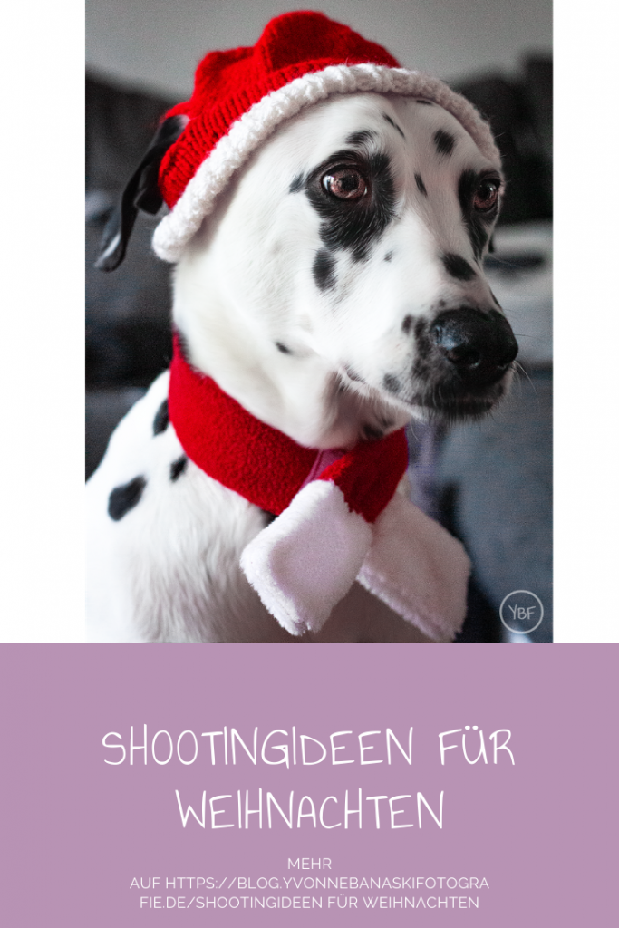 Shootingideen für Weihnachten