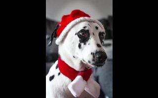 header_weihnachtsideen